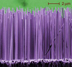 Nanowires Grown by Beam Epitaxy