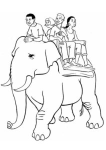 riding-an-elephant-t8909