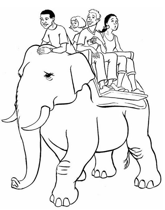 The Art of Riding an Elephant