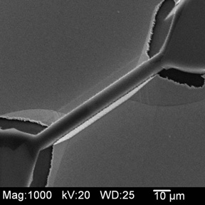Experimental Workshop on Scanning Electron Microscopy and X-Ray Diffraction