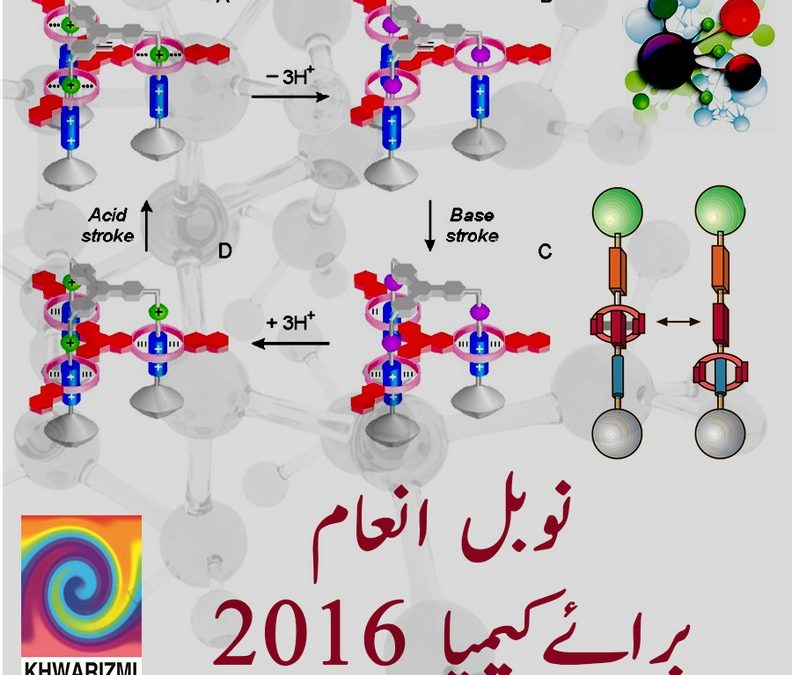 Explaining the Nobel Prize in Chemistry 2016